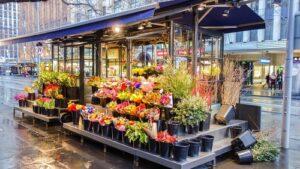 Voici les raisons pour lesquelles vous devriez offrir des fleurs à vos proches