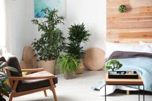 https://deeo.fr/wp-content/uploads/2021/07/Retrouvez-lequilibre-dans-votre-chambre-a-coucher-grace-aux-preceptes-du-Feng-Shui.jpeg